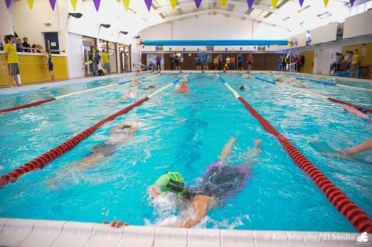 Triathlon ireland swim ireland dual membership triathlon ireland for Swimming pool membership dublin